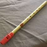 The Irish Tin Whistle