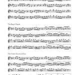 400-morceaux-irlandais_page_059