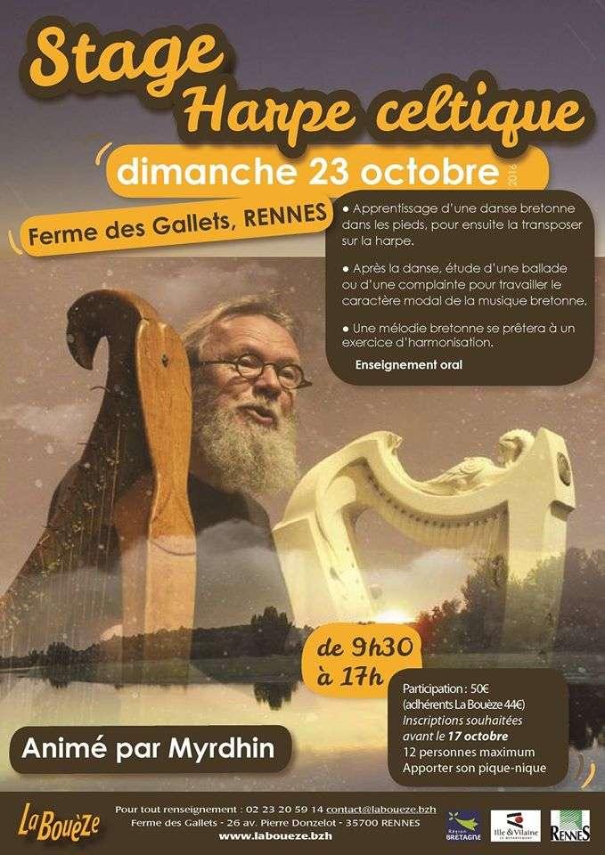 Stage de Harpe Celtique