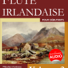 flute irlandaise pour debutants volume 2