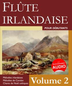 flute irlandaise pour debutants volume 2