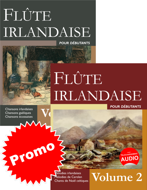 promo : flûte irlandaise pour débutants