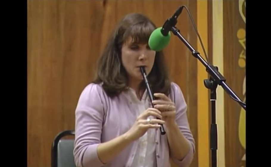 roisin nic dhonncha tin whistle